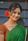 Sandeepti