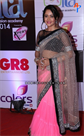 Bollywood and TV Celebritis at 14th Indian Television Academy Awards