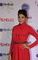 Bollywood-celebrities-at-Ciroc-Filmfare-Glamour-and-Style-Awards-Image29