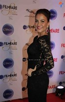 Bollywood-celebrities-at-Ciroc-Filmfare-Glamour-and-Style-Awards-Image20