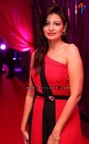 Bollywood-Stars-at-Sikander-Birthday-Party-Image18