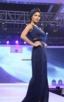 Bollywood-Models-and-Actresses-At-Launch-of-LIVA-Fashion-Image24