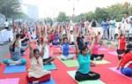 Anahata-Yoga-and-Zone-108-Surya-Namaskars-Image19
