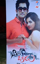Naalo-Okkadu-Movie-Audio-Launch-Image11