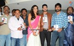 Yavvanam-Oka-Fantasy-Audio-Launch-Image5